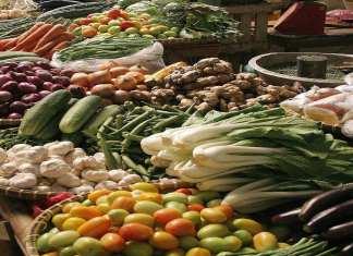 Les légumes verts, les plantes du genre allium, et les légumes crucifères sont des éléments clés d'une alimentation saine.