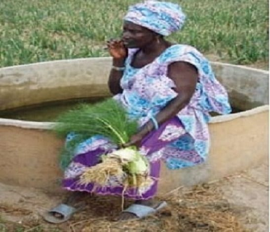 La présence d'une multiplicité d'actions pour faciliter l'accès au foncier et son contrôle par les femmes,
