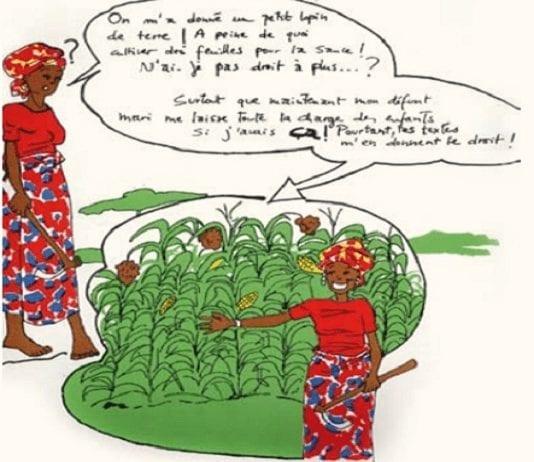 accès des femmes à la terre en Afrique de l'Ouest - Capture