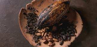Fèves de cacao. © Getty Images