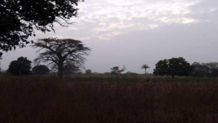 Randonnée de 8 jours à travers la haute Casamance.5
