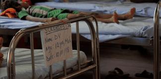 Fonds mondial à Lyon : le paludisme, des progrès et des menaces