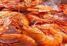 Des paquets de crevettes aux dates de péremption falsifiées ''inondent'' le marché (Service d'hygiène)