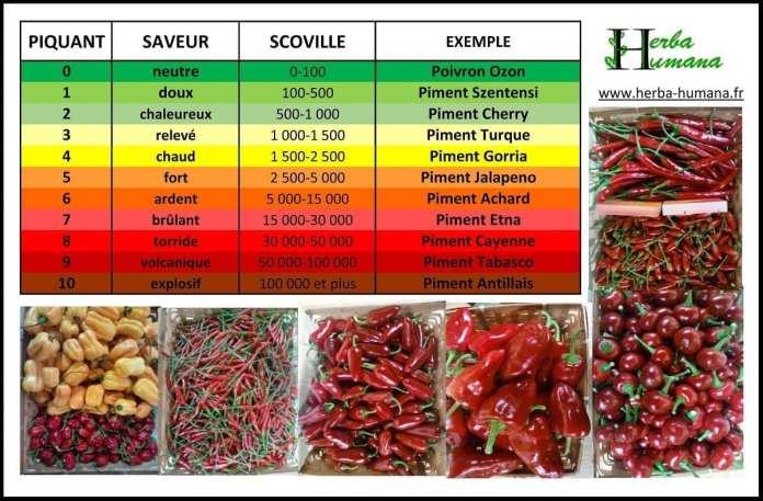 echelle piments
