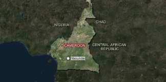 Extrême nord du Cameroun : 21 civils enlevés par Boko Haram (responsables)