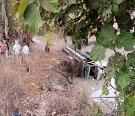 Accident à Sédhiou : Un camion qui transportait des porcs chute et fait un mort