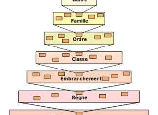 Classification classique