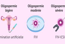 traitement-oligospermie-selon-degre