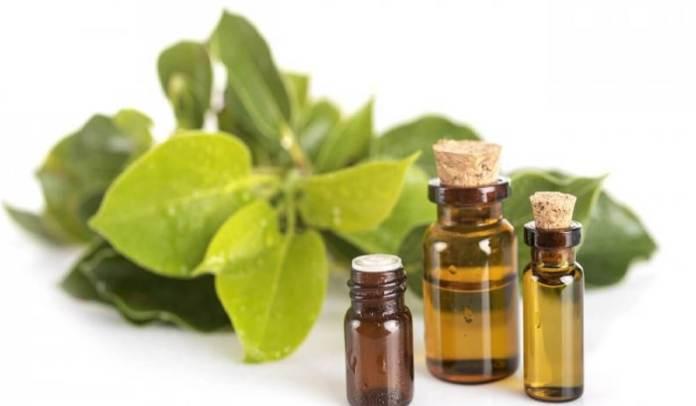 Un massage à l'huile essentielle de ravintsara 7-12