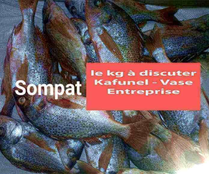Sompate