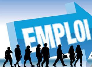 creation-d-un-conseil-national-pour-l-insertion-et-l-emploi-des-jeunes-cniej
