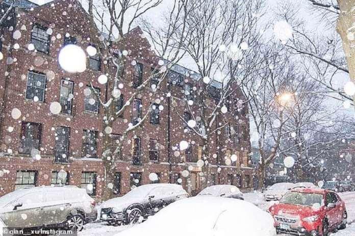 On s'attend à ce que jusqu'à 12 pouces de neige s'accumulent à Chicago. Un habitant de Chicago a publié une photo des conditions de neige dans la ville samedi