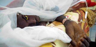 Causes, symptômes… Tout savoir sur la fièvre jaune, cette maladie qui fait son retour au Sénégal