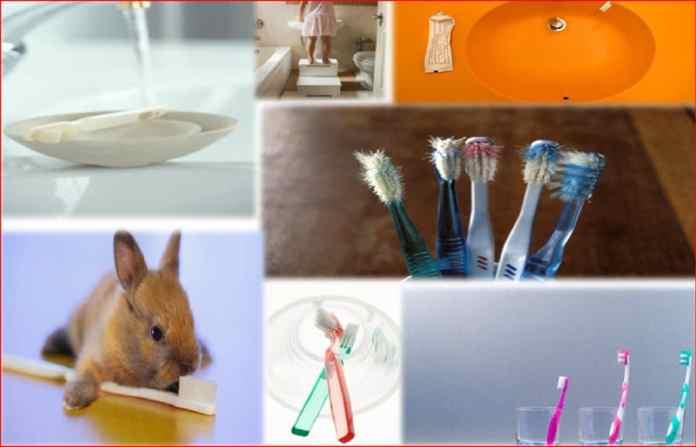 La brosse à dents, un nid à microbes www.kafunel.com Capture