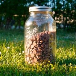 Ball Mason Jars Half Gallon-Wide chokolade