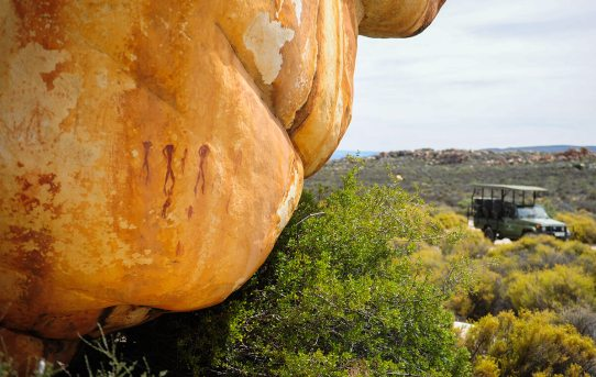 Footsteps of the First People