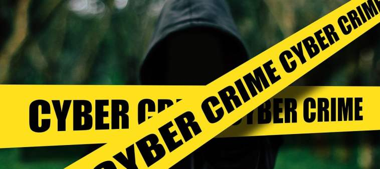 computer and cyber crimes