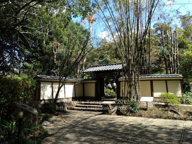 日本庭園の門