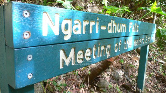 ンガリダムフォールスの標識