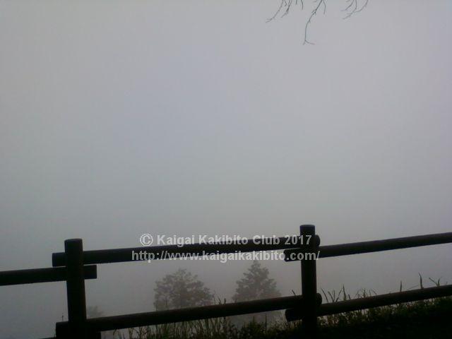 高尾山と陣馬山縦走ルートの霧