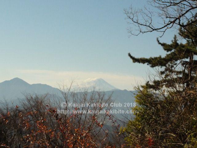 小仏城山からの富士山