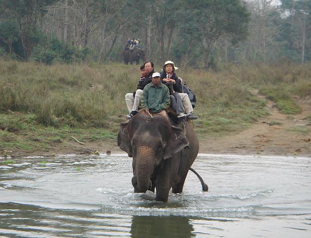 チトワン国立公園でのエレファントサファリ