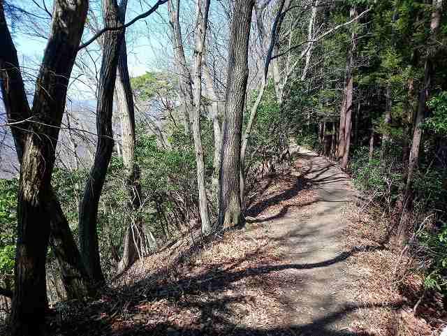惣岳山への登山道