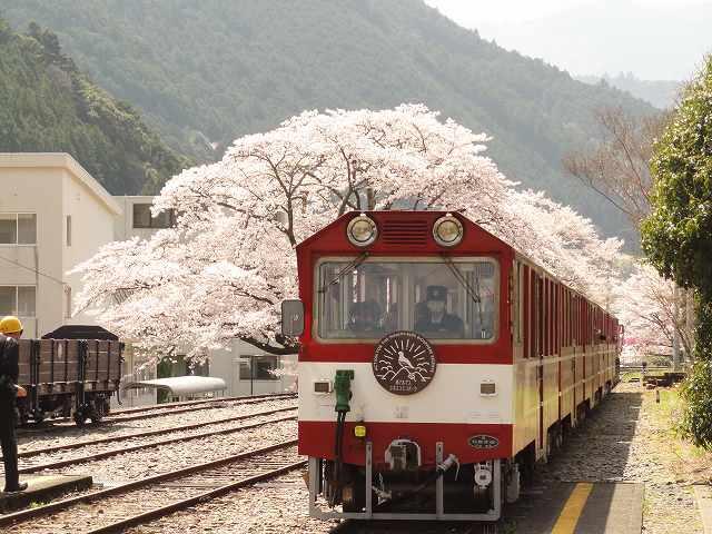 南アルプスあぷとライン(大井川鉄道井川線)