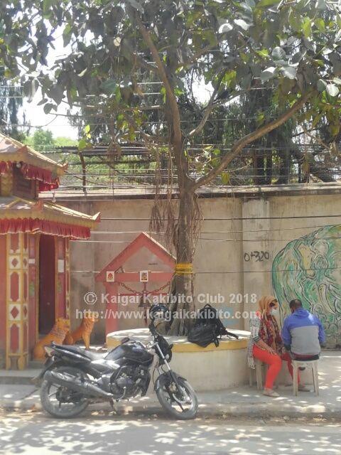 ネパールの街角の風景