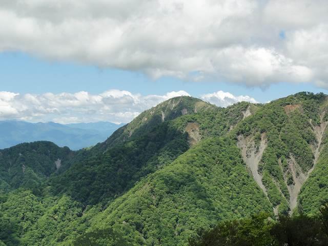 塔ノ岳山頂から眺める丹沢山方面