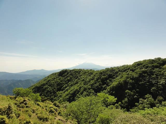 大倉尾根から富士山