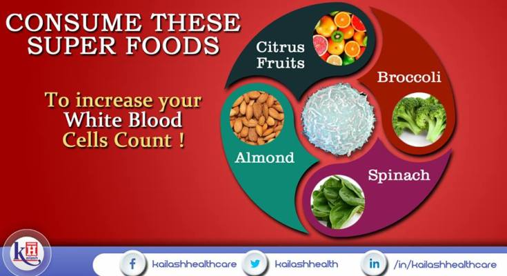 4 Super Foods to increase your White Blood Cells