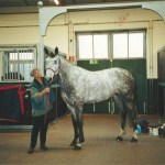 Christy Shires and Copa America after winning the bid for her new horse in 2002