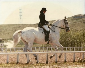Freckle Bar, Gwen's appaloosa mare, whom she earned all but one score on for the USDF Bronze Medal rider award