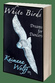 White Birds 3D book cover