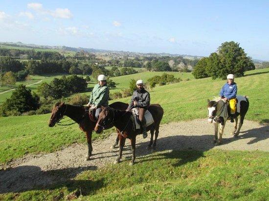 Horse Riding Warkworth