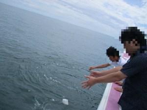 東北海洋散骨