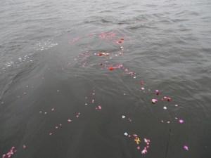 海洋散骨の献花