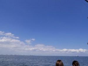 東京の海洋散骨