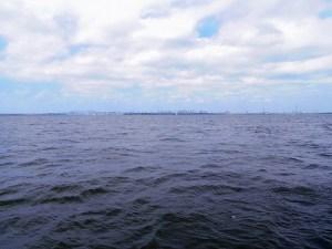 東京海洋散骨合同