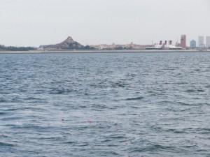東京湾の散骨