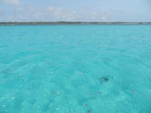 下地島沖海洋散骨