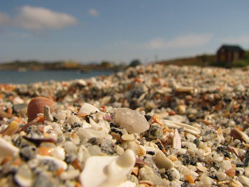 Finfin strand på Træna.