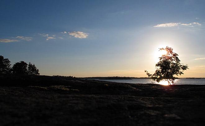 Kvällsvy från Östra Örholmens norrsida