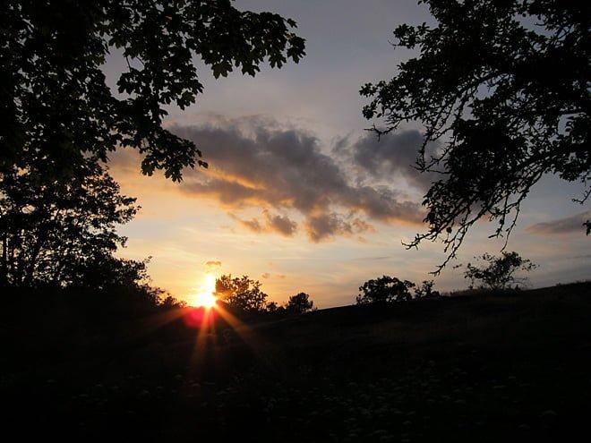 Sol bakom moln och moln bakom träd