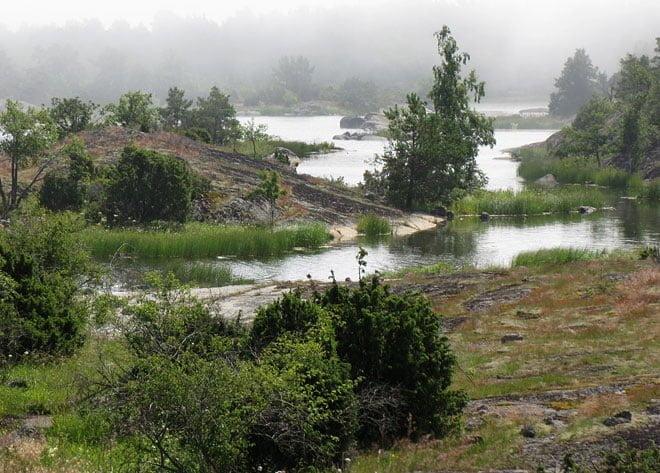 Dimman sveper in vid Svinskär