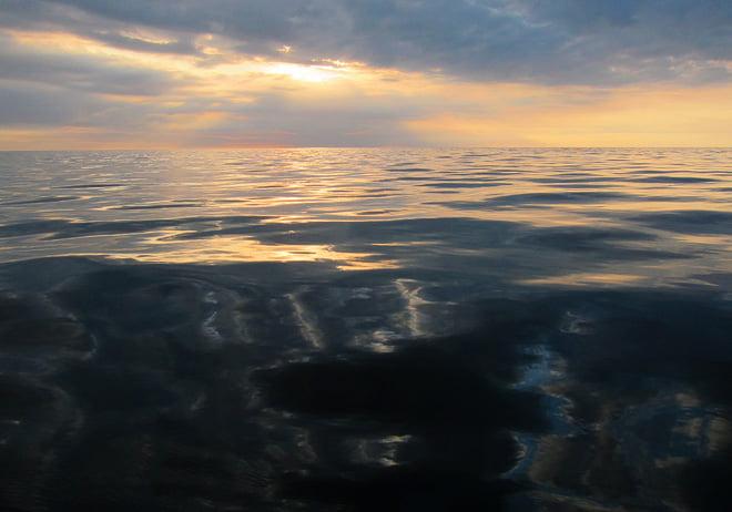 Vattnet är sådär lite mysigt oljigt