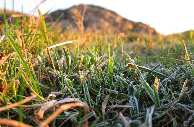Morgonfrost på Rävholmen