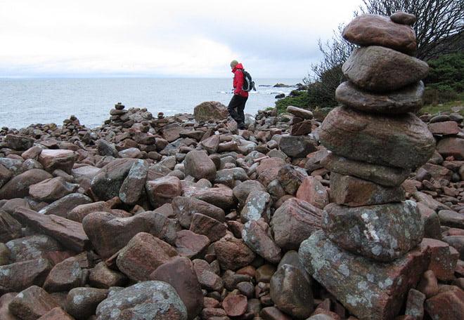Stenarna växer extra märkligt på sina ställen