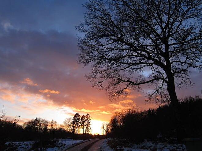 Solnedgång hemomkring
